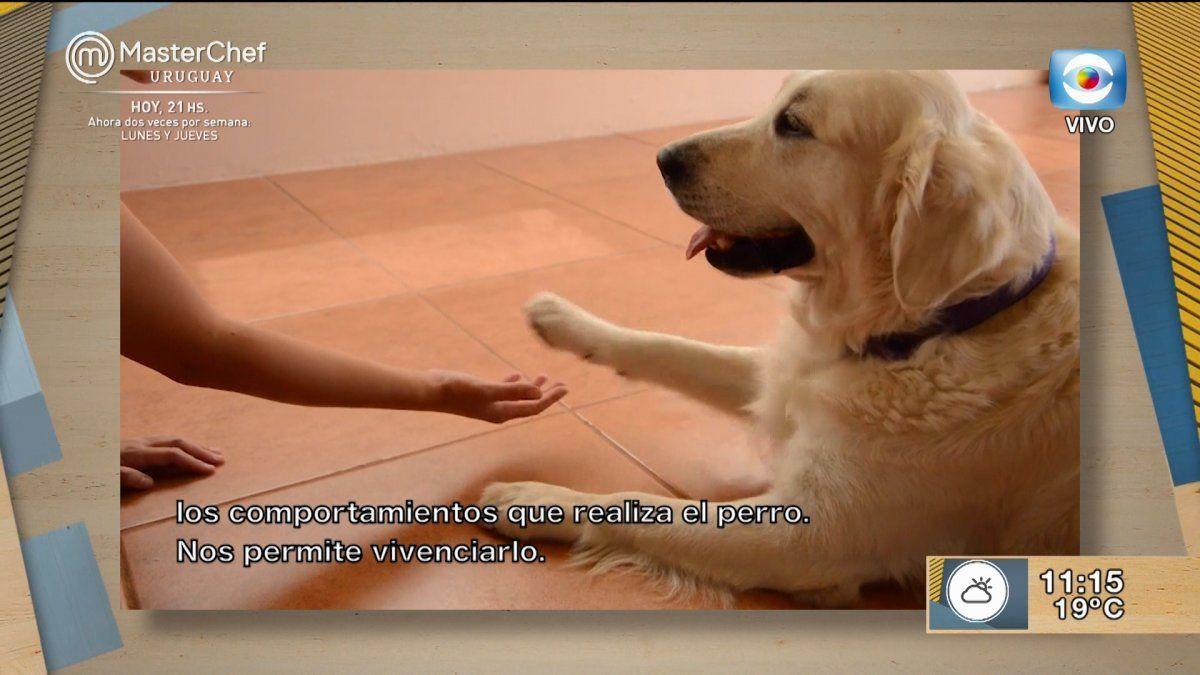 Natalie Granek y su perra Hopy realizan intervenciones asistidas